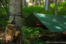 Bushcraft i survival